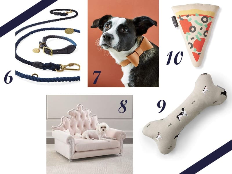 Valentine's Day Gift Guide for Pet Cats and Dogs
