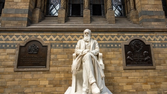 Darwin Day: Engaging Science-Themed Gifts for Enthusiasts