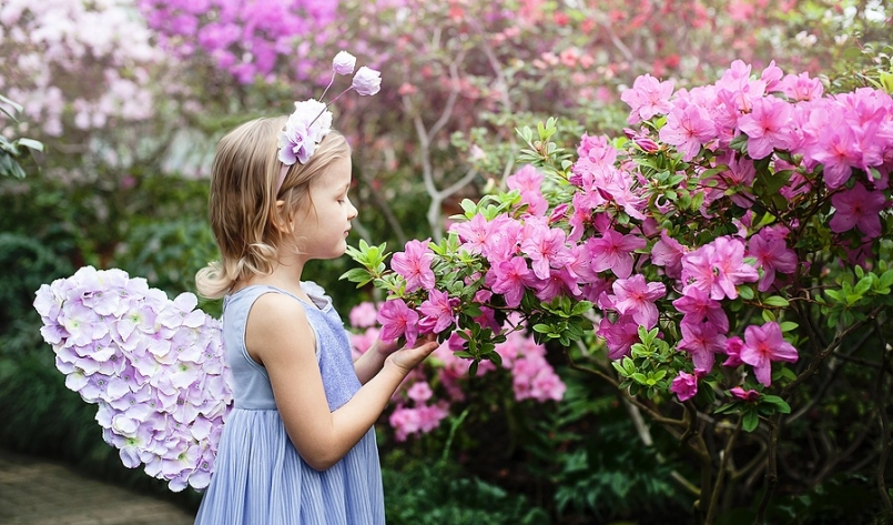 Back to School Looks: Fairy-Themed Fashion for Kids