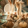 Harvest Themed Entertaining Must-haves for Fall